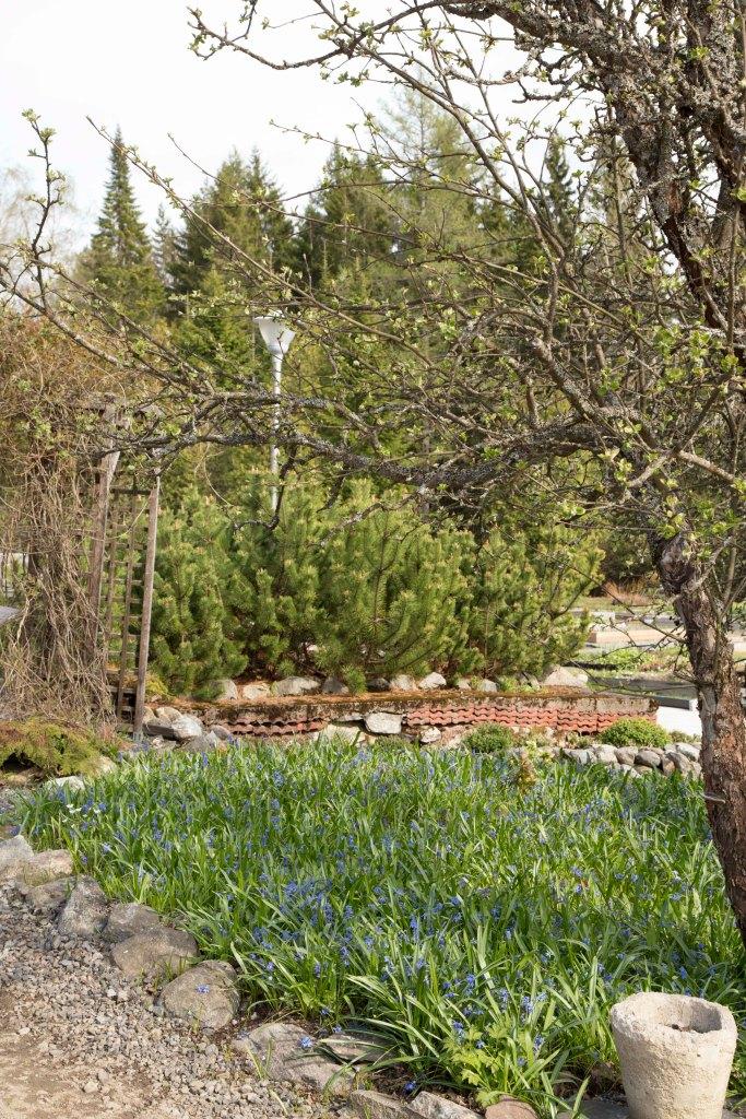 Karimaan puutarhassa_3