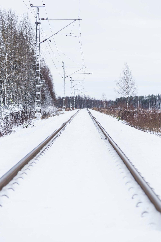 Ensimmäinen talvipäivä_10