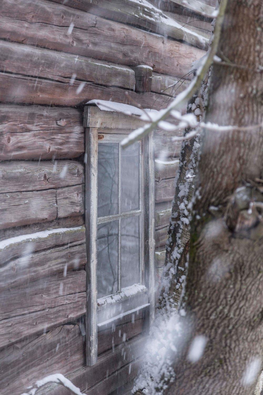 Ensimmäinen talvipäivä_12