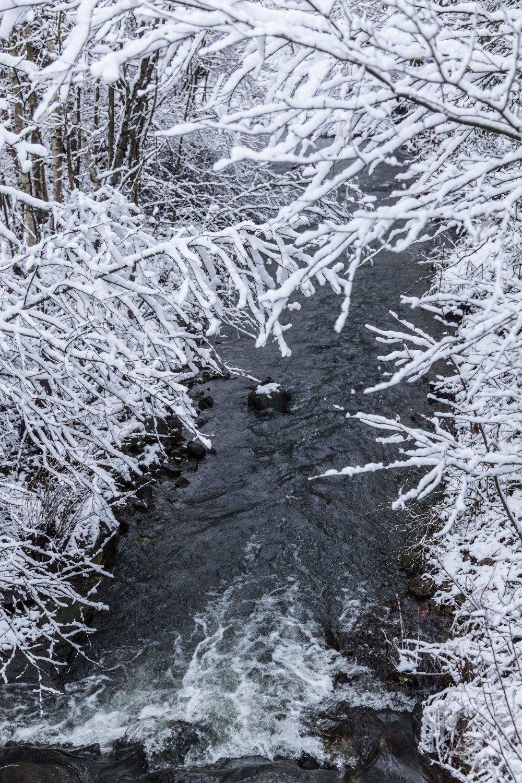 Ensimmäinen talvipäivä_15
