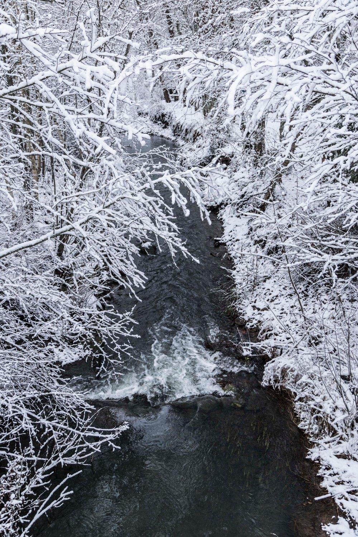 Ensimmäinen talvipäivä_16