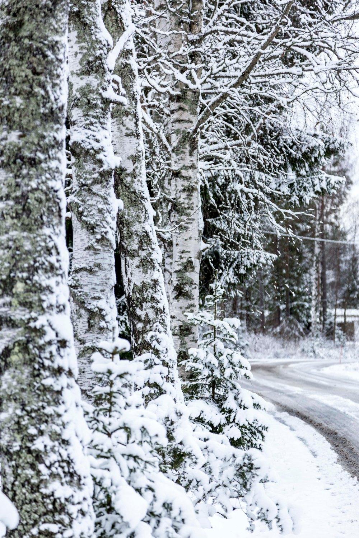 Ensimmäinen talvipäivä_3