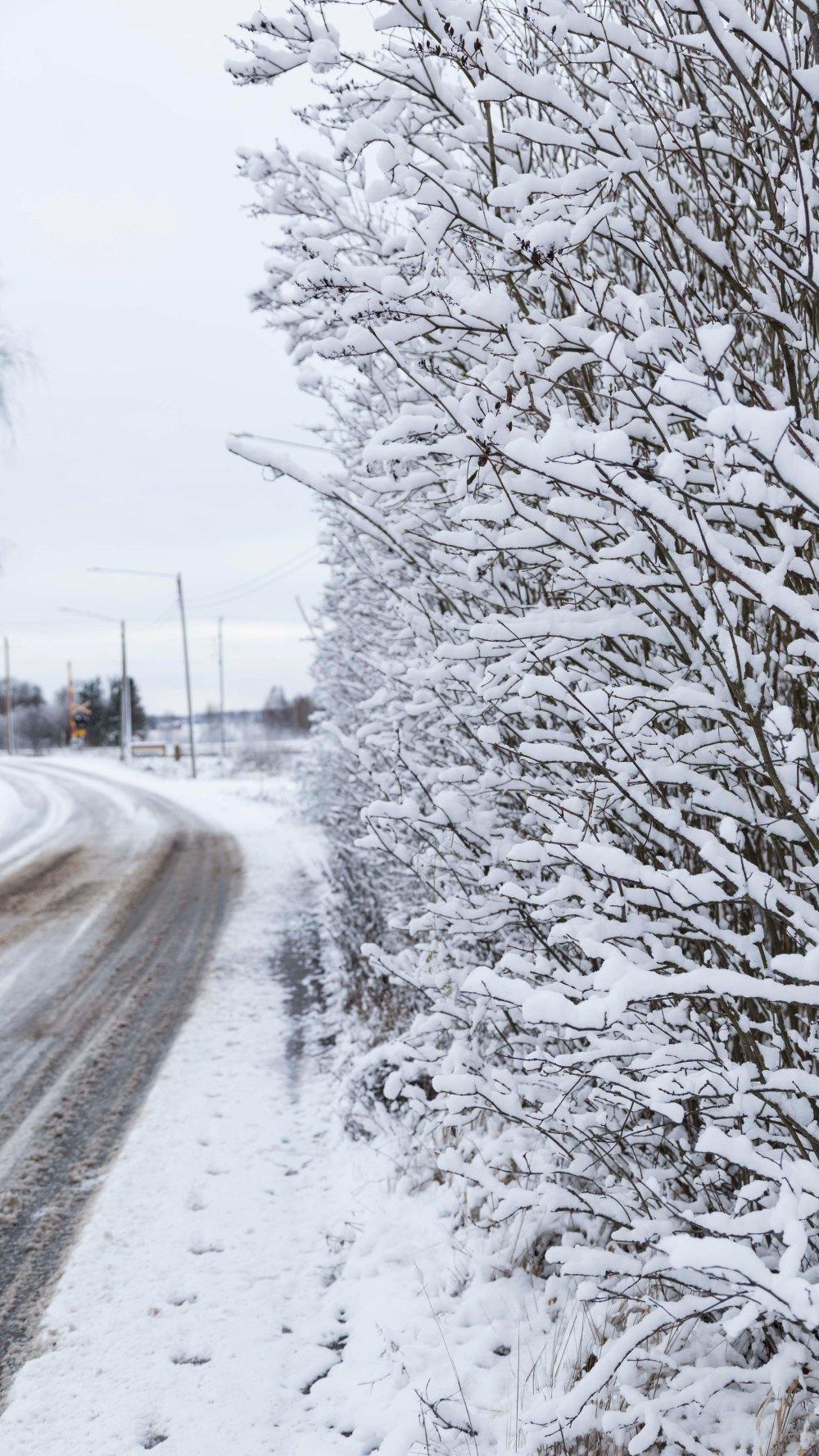 Ensimmäinen talvipäivä_5