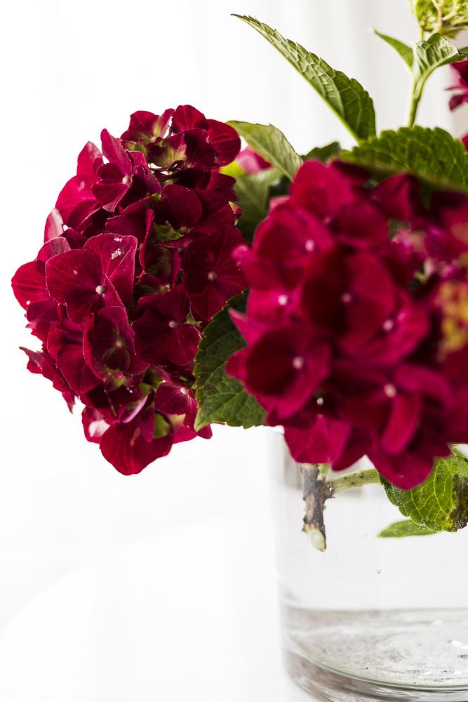 Kukkia&marjoja