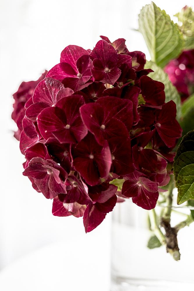 Kukkia&marjoja_2