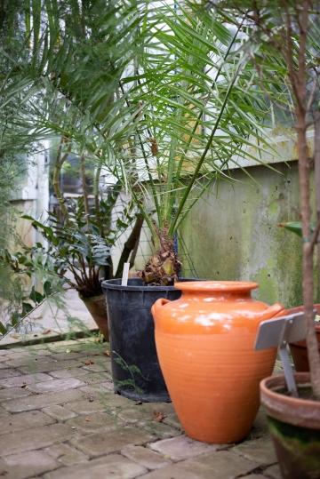 Kasvitieteellinen puutarha_Turku_4